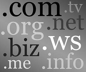 独自ドメインで資産サイト・ブログを構築する
